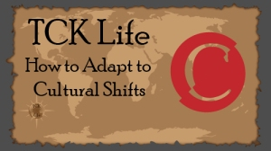 How-to-cultural-shift