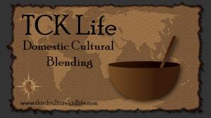 Domestic-Cultural-Blending